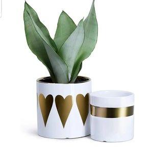 Ceramic Planters with Pattern Decor